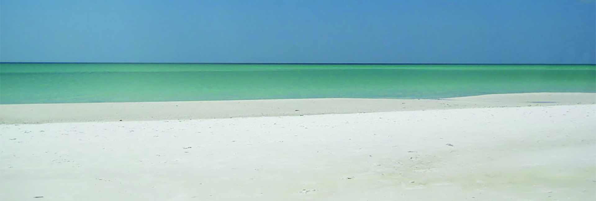 Beach-Walk-Talk-Therapy | drlisamowrey com